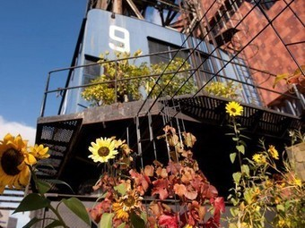 Floating ship crane converted into urban garden in Antwerp ... | Sustainibility | Scoop.it