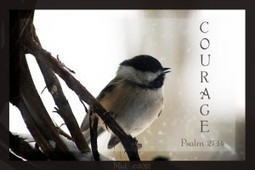 The Courageous Nature of Trust | Business & Self Help | Scoop.it