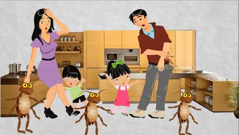 The Never Ending Cycle of West Palm Beach Pests | Pest control West Palm Beach Florida | Scoop.it