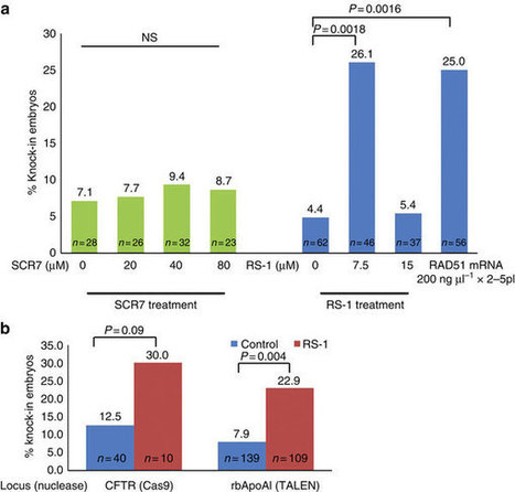 RS-1 enhances CRISPR/Cas9- and TALEN-mediated knock-in efficiency - Nature Comm. | Plant-Microbe Interaction | Scoop.it