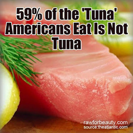 Natural Cures Not Medicine: 59% of the Tuna Americans Eat is Not Actually Tuna | FoodNote Content | Scoop.it