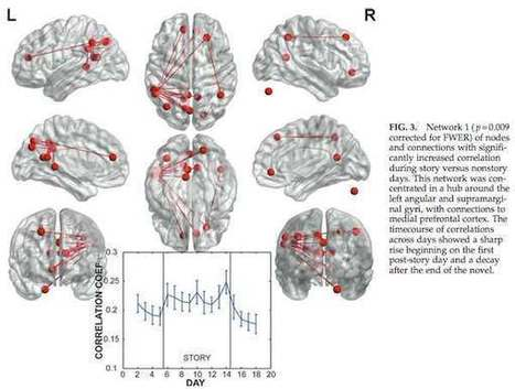 Des scientifiques montrent qu'un livre change la vie, biologiquement | Sciences cognitives | Scoop.it