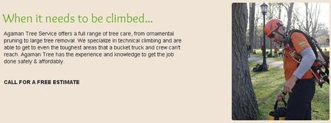 Outstanding tree services by General Tree & Lawn Service.   Agaman Tree Service   Scoop.it
