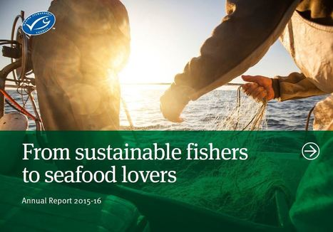 New report shows accelerated growth in the sustainable seafood supply chain as MSC certified catch nears 10 million tonnes | Aquaculture Directory | Aquaculture Directory | Scoop.it