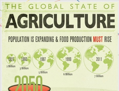 The Global State of Agriculture infographic | The Fascinating Geography Classroom | Scoop.it