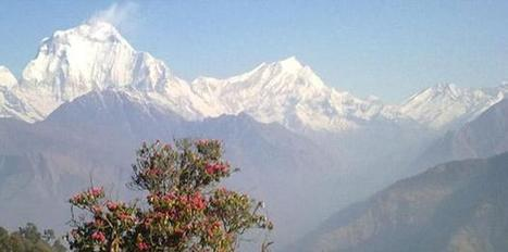 Trekking in Nepal | Trekkig in Nepal | Scoop.it