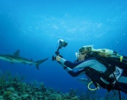 5 Scuba Diving Bad Habits and How to Avoid Them | All about water, the oceans, environmental issues | Scoop.it