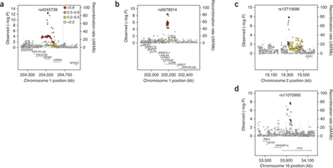 Genome-wide association studies identify four ER negative-specific breast cancer risk loci : Nature Genetics : Nature Publishing Group | Breast Cancer News | Scoop.it