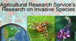 National Invasive Species Information Center | Invasive species | Scoop.it