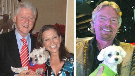 Lucky 'the celebrity dog' dies | Animal Rescue Web Digest | Scoop.it