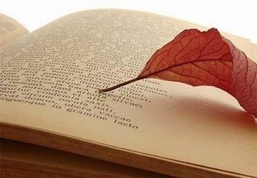 Amoxcalli: Casa de los libros: VAMOS A LEER... con escritores hispanoamericanos. | Literatura y contemporaneidad | Scoop.it