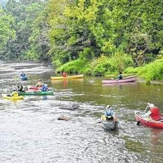 New River 'Paddle-a-thon' to take place July 12 -   New River News   Scoop.it