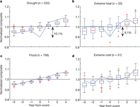 Influence of extreme weather disasters on global crop production | Statistical Physics of Ecological Systems | Scoop.it