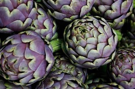 Focus sur : L'Artichaut | Les Espaces Conseils - Arkopharma | Jardin médicinal | Scoop.it