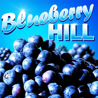 Blueberry Hill | Ecigwizard Vaping Lounge | Scoop.it