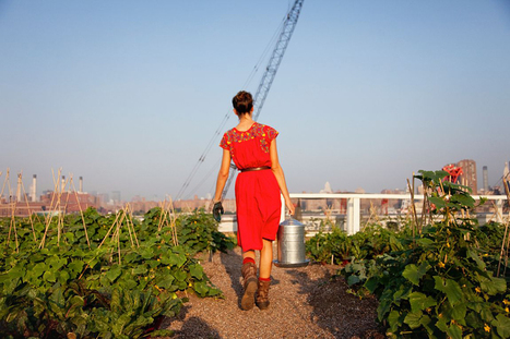 We certainly couldn't keep Annie all to ourselves,... | Vertical Farm - Food Factory | Scoop.it