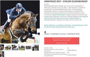 Armitages Boy n'a pas été vendu! / Saut d'obstacles / Sport / Accueil - Leperon.fr | Leperon.fr | Scoop.it