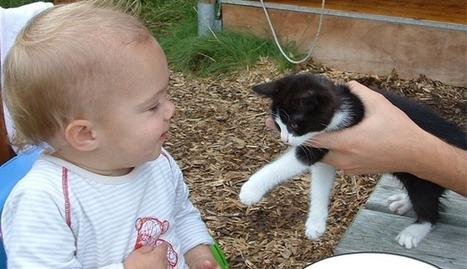 Kind en dier een gouden combinatie | Het onderzoekende kind | Scoop.it