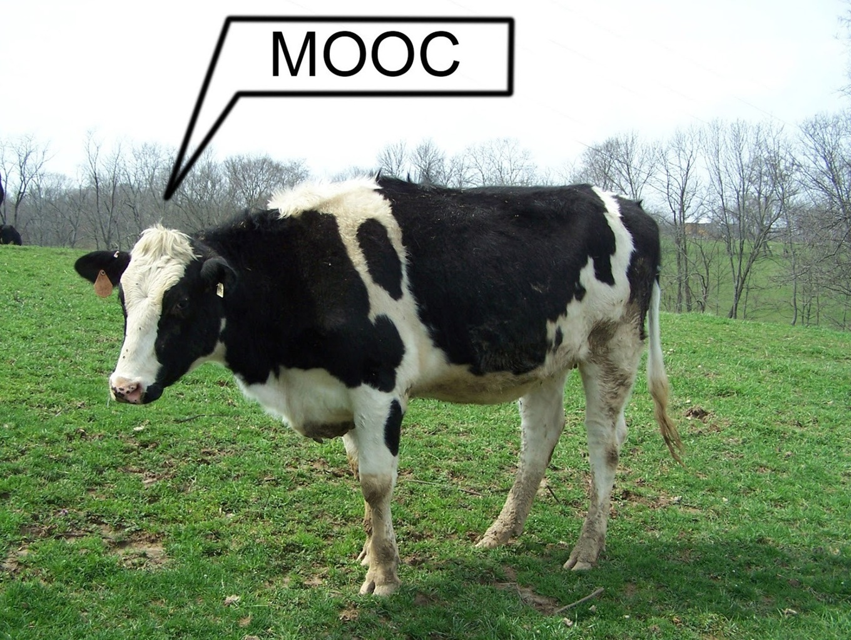 5 MOOCs Teachers Should Take As Students - Edudemic