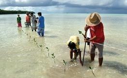 IPCC - Intergovernmental Panel on Climate Change | adaptation des villes au changement climatique | Scoop.it