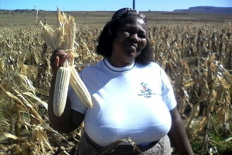 Farmer says seed production transformed her life   CAADP   NEPAD CAADP: Agriculture, Food Security and Nutrition in Africa   Scoop.it