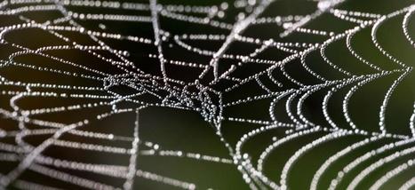 Darknet et terrorisme, de l'amalgame à la désinformation | La curation en communication web | Scoop.it