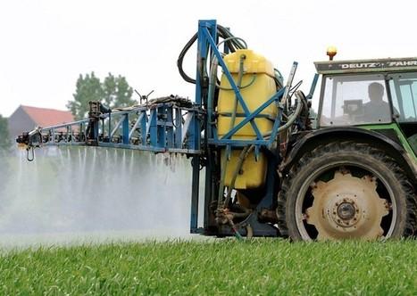 Les parlementaires européens demandent une étude indépendante sur le glyphosate | OGM, Pesticides, Les alternatives et les problèmes de l'agriculture chimique | Scoop.it