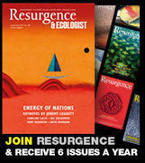 Resurgence • Resurgence   Healthy and Sustainable Living MOOC 2014   Scoop.it
