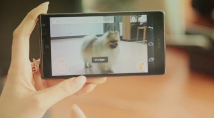 SinglePet, le robot qui prend soin de vos animaux | Les robots domestiques | Scoop.it