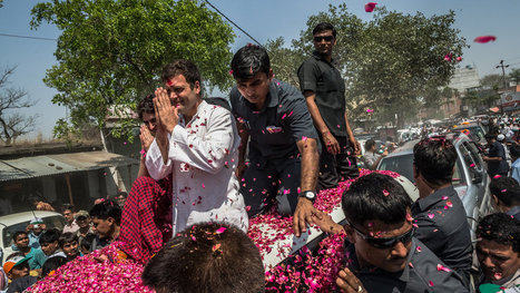 #Dynasty : An Uneasy Inheritance of India's Political Dynasty: by Gardiner Harris- #RahulGandhi a Tragicomedy | Election Watch: Indian General Election 2014 | Scoop.it
