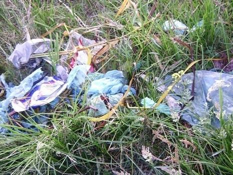 Reciclaje de bolsas de plastico - erenovable.com | Infraestructura Sostenible | Scoop.it