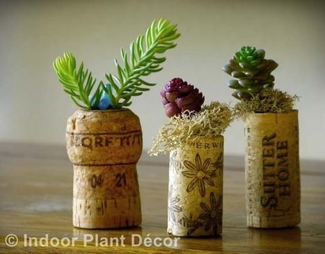 Indoor Plant Decor - Book Party, Review & Giveaways   Annie Haven   Haven Brand   Scoop.it