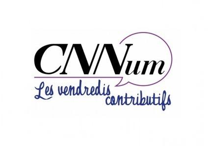 Fracture numérique et e-inclusion au Conseil National du Numérique | inclusion numérique | Scoop.it
