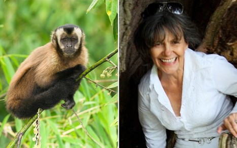Yorkshire housewife 'raised by  monkeys in jungle' | Quite Interesting News | Scoop.it