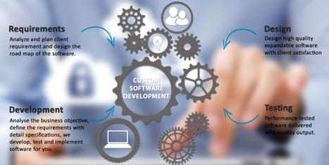 Benefits of Custom Software Development   craterzone   Scoop.it