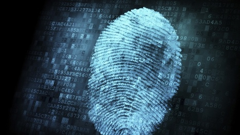 Fingerprints point way forward for online Passwords | Technology in Business Today | Scoop.it