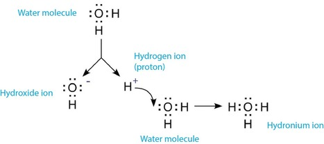 Is pH the Measurement of Hydrogen Ion Concentration or Ion Activity? | Laboratory - Analytics | Scoop.it