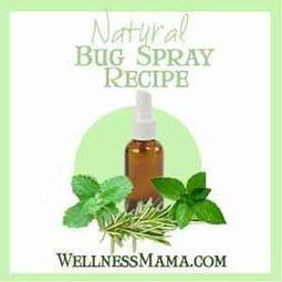 Homemade Herbal Bug Spray Recipes That Work!   Aromatherapy plus   Scoop.it