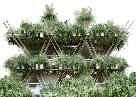 Penda unveils vision for modular bamboo city | Green Architecture | Scoop.it