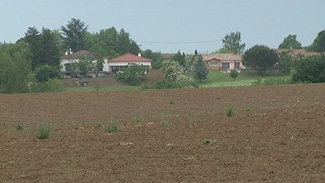 La commune de Saint-Jean (Haute Garonne) repousse les pesticides à 50 mètres des habitations - France 3 Midi-Pyrénées | Territoires durables | Scoop.it