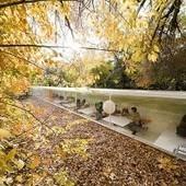 Un open space ouvert à la nature... | Développement durable pour les entreprises et les collectivités | Scoop.it