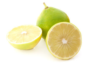 Searching for best & pure bergamot oil suppliers?-Come at allbizmart.com | Free Business Listings Online | Scoop.it
