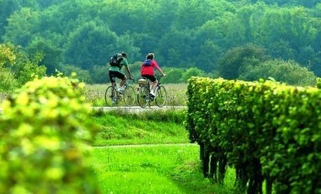 Le Pays du coeur entre deux mers se mobilise pour développer son offre touristique - Aqui.fr | Agriculture en Gironde | Scoop.it