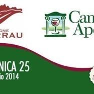Vigne Surrau, Cantine Aperte 2014. Domenica 25 Maggio - Vini di Sardegna e Cantine - Le Strade del Vino | Le Strade del Vino - Il portale sull'enogastronomia in Sardegna | Scoop.it