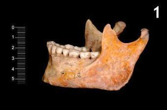The Archaeology News Network: Scientists recover part of the genome of 2 hunter-gatherer individuals from 7,000 years ago   Pre-Modern Africa, the Middle East - and Beyond   Scoop.it