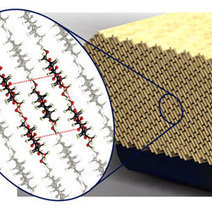 """Cellulose nanocrystals possible """"green"""" wonder material 