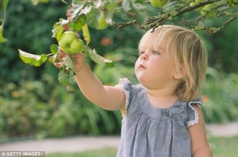 An apple a day could keep tummy bugs at bay: | Kickin' Kickers | Scoop.it