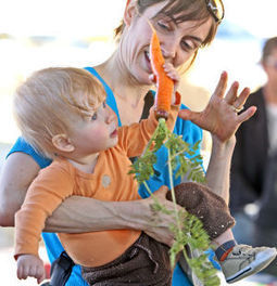 Family Fun on the Farm Fridays gives a taste of milking, picking | Arizona Daily Star | CALS in the News | Scoop.it