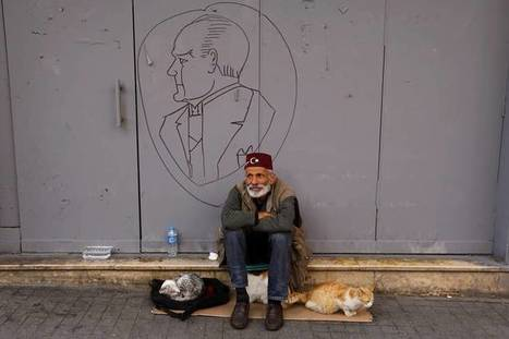 Why Istanbul Should Be Called Catstantinople | Criminology and Economic Theory | Scoop.it