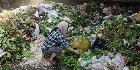 Gaspillage alimentaire: les initiatives se multiplient | économie circulaire, économie de la fonctionnalité | Scoop.it